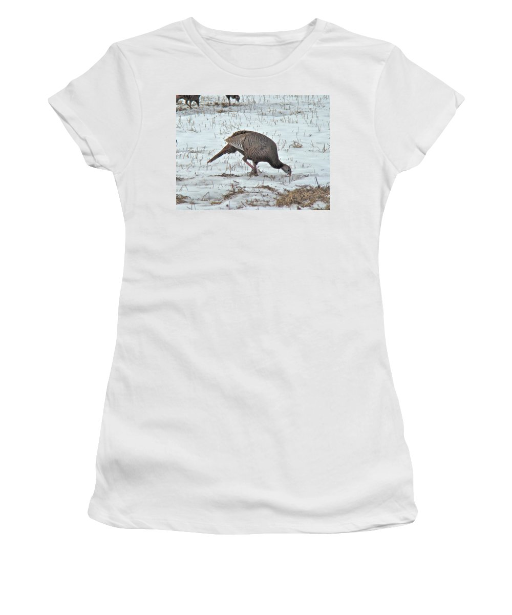 Turkey Women's T-Shirt (Athletic Fit) featuring the photograph Wild Turkey - Meleagris Gallopavo by Mother Nature
