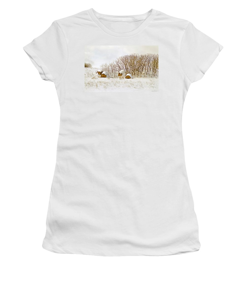 Hay Women's T-Shirt (Athletic Fit) featuring the photograph Winter Beauty by Deborah Benoit