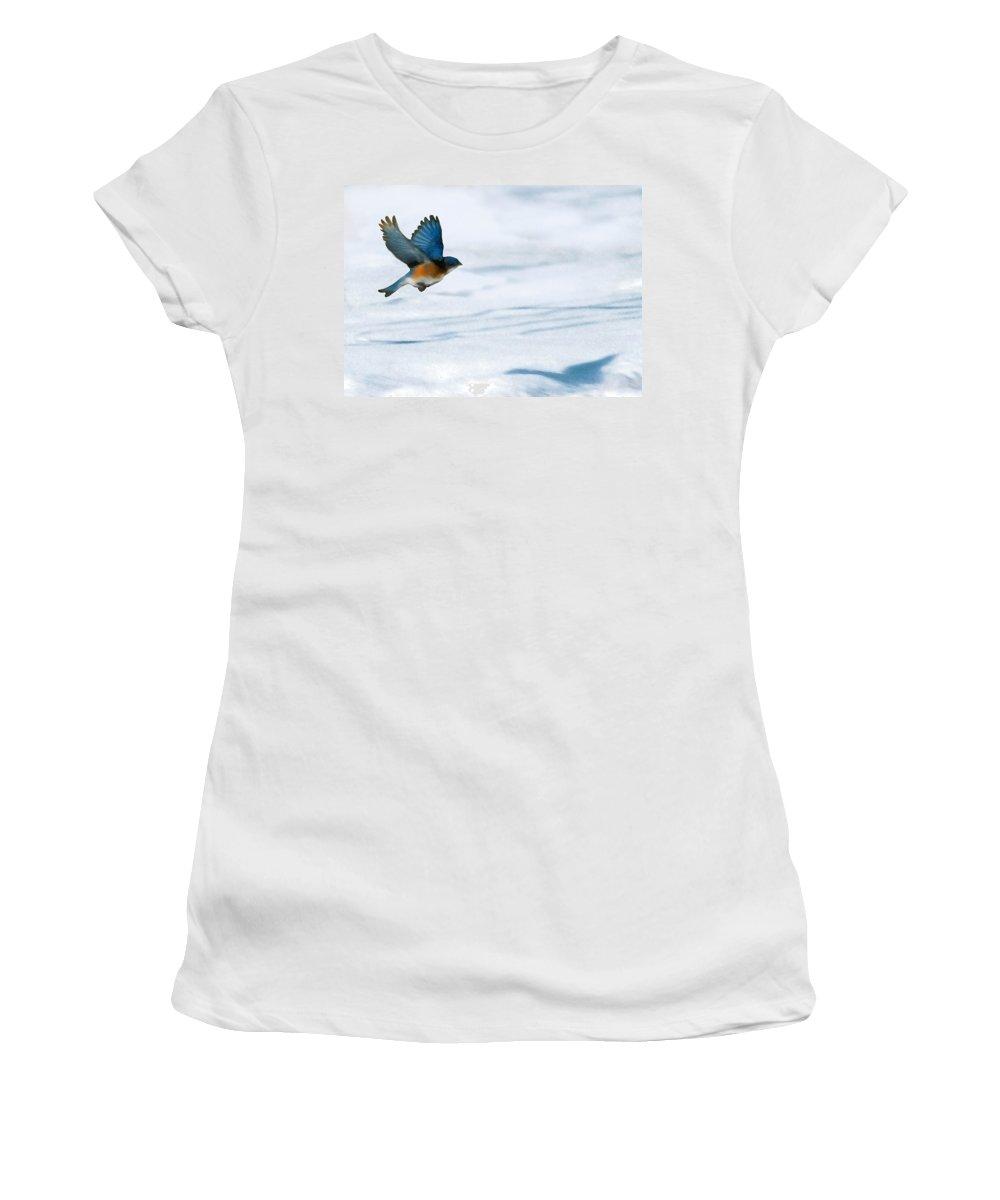 Blue Bird Women's T-Shirt (Athletic Fit) featuring the digital art Winter Blues by Steve Karol