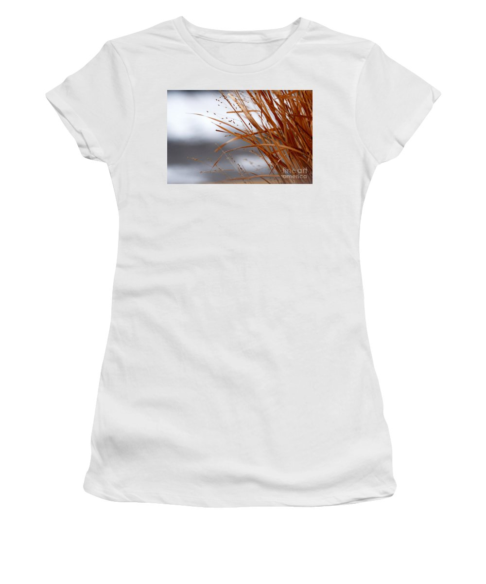Grass Women's T-Shirt (Athletic Fit) featuring the photograph Winter Grass - 2 by Linda Shafer