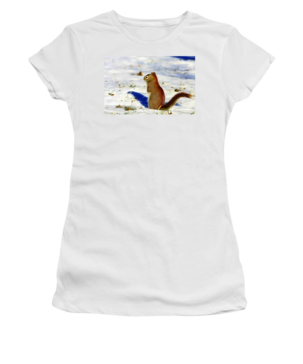 Red Women's T-Shirt (Athletic Fit) featuring the photograph Winter Red by Deborah Benoit