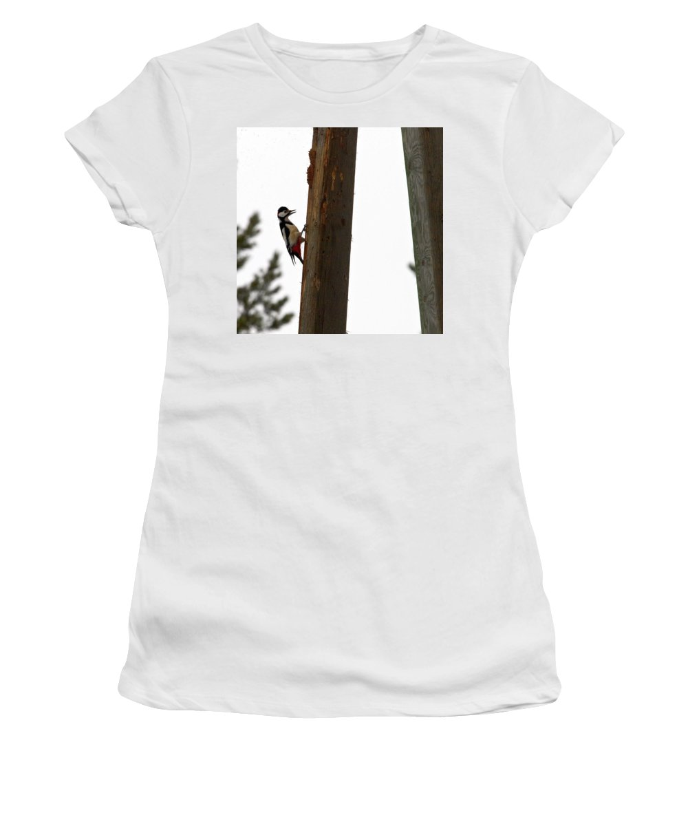 Lehtokukka Women's T-Shirt (Athletic Fit) featuring the photograph Woodpecker Workshop by Jouko Lehto