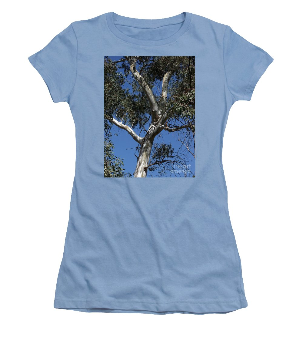 Trees Women's T-Shirt (Athletic Fit) featuring the photograph Eucalyptus by Kathy McClure