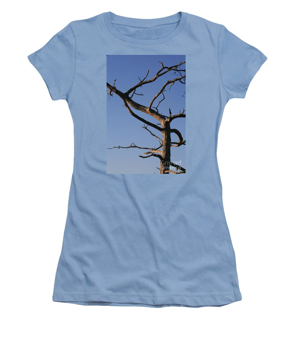 Tree Women's T-Shirt (Athletic Fit) featuring the photograph Gnarly Tree by Nadine Rippelmeyer