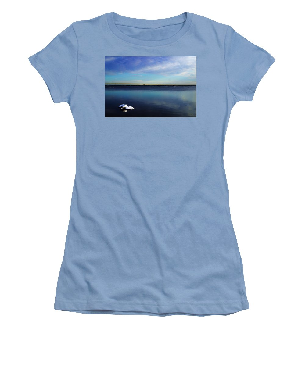 Landscape Women's T-Shirt (Athletic Fit) featuring the photograph Lone Ice by Anthony Jones