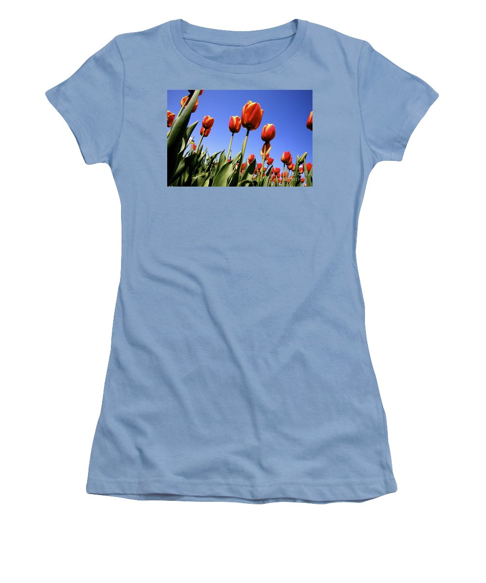 Tulips Women's T-Shirt (Athletic Fit) featuring the photograph Tulips Time 3 by Robert Pearson