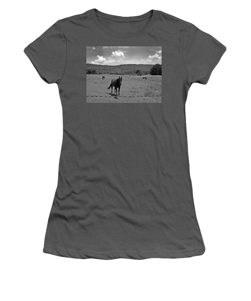 Horses Women's T-Shirt (Athletic Fit) featuring the photograph Black And White Pasture With Three Horses by Anne Cameron Cutri