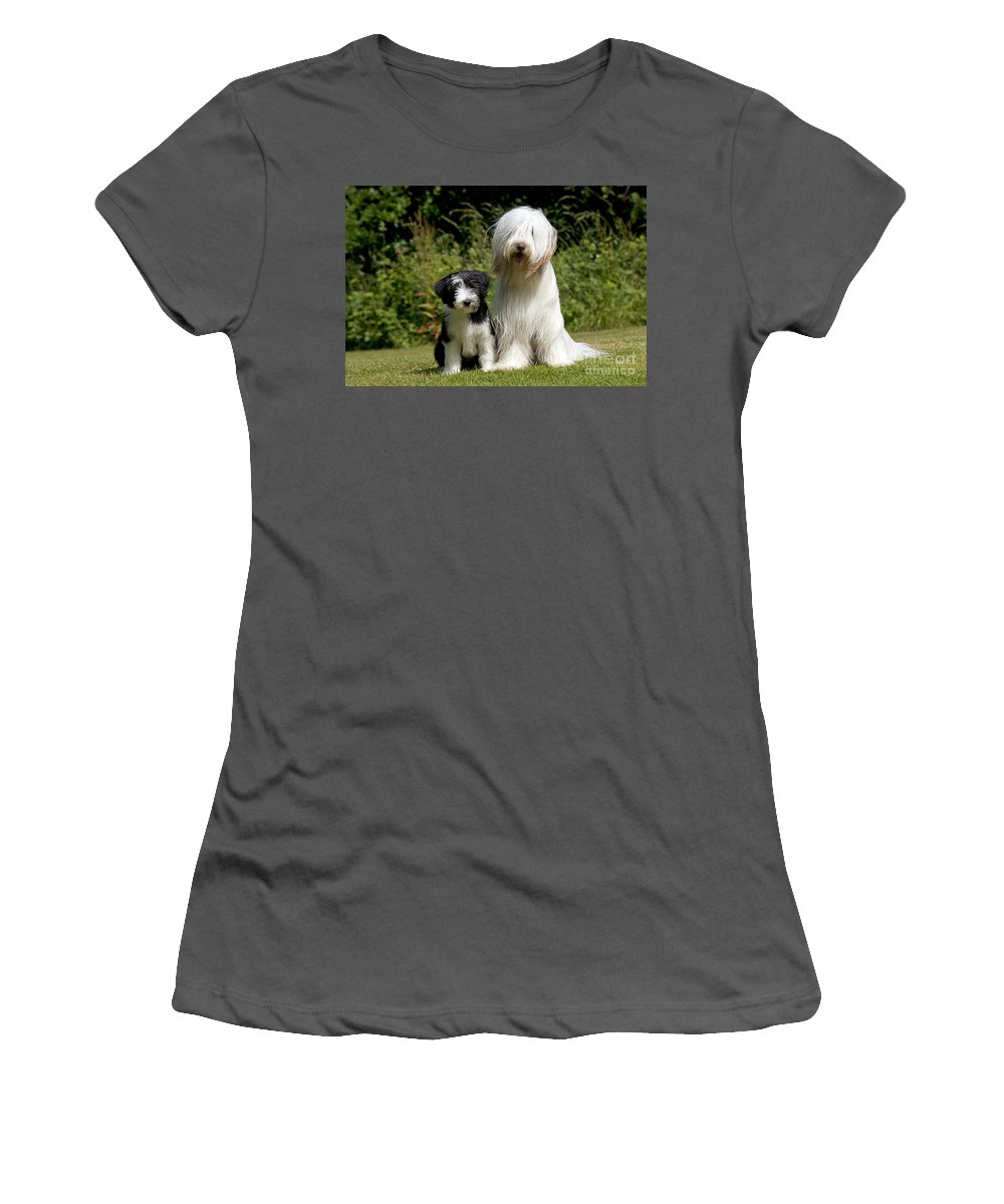 Bearded Collie Women's T-Shirt (Athletic Fit) featuring the photograph Bearded Collie And Puppy by John Daniels