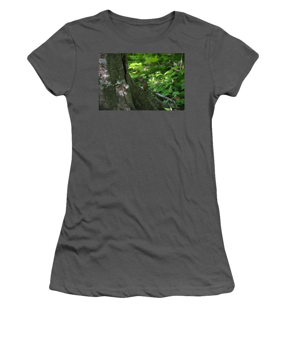 Chipmunk Women's T-Shirt (Athletic Fit) featuring the photograph Chipmunk by Linda Kerkau
