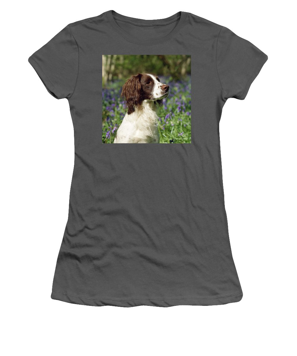 English Springer Spaniel Women's T-Shirt (Athletic Fit) featuring the photograph English Springer Spaniel Dog by John Daniels