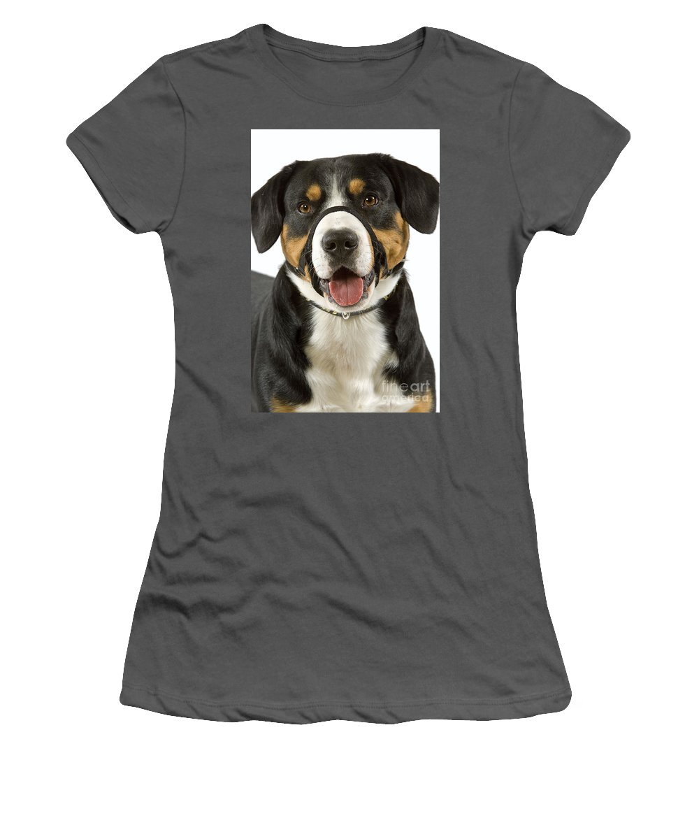 Entlebuch Mountain Dog Women's T-Shirt (Athletic Fit) featuring the photograph Entlebuch Mountain Dog by Jean-Michel Labat