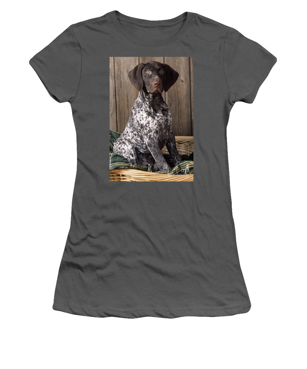German Short-haired Pointer Women's T-Shirt (Athletic Fit) featuring the photograph German Short-haired Pointer Dog by John Daniels