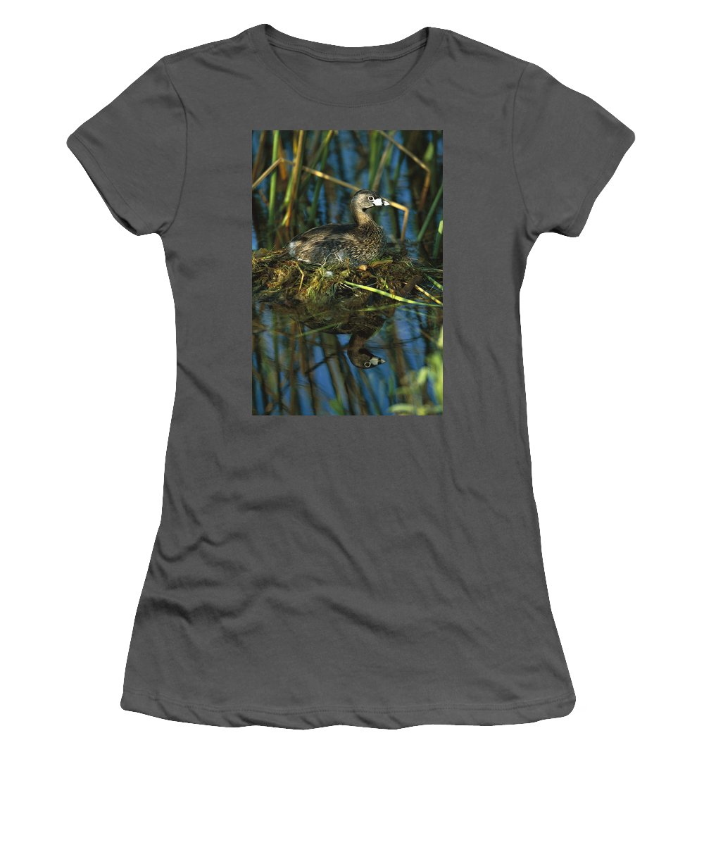 Feb0514 Women's T-Shirt (Athletic Fit) featuring the photograph Pied-billed Grebe Nesting Texas by Tom Vezo