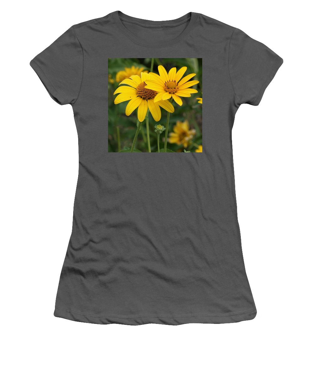 Sunflower Women's T-Shirt (Athletic Fit) featuring the photograph Sunflowers by Ernie Echols