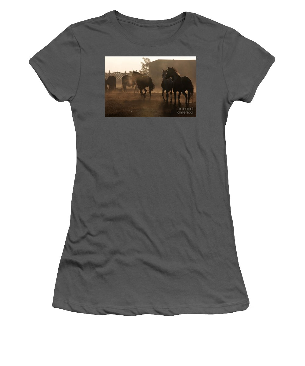Misty Morning Women's T-Shirt (Athletic Fit) featuring the photograph The Misty Morning by Angel Ciesniarska