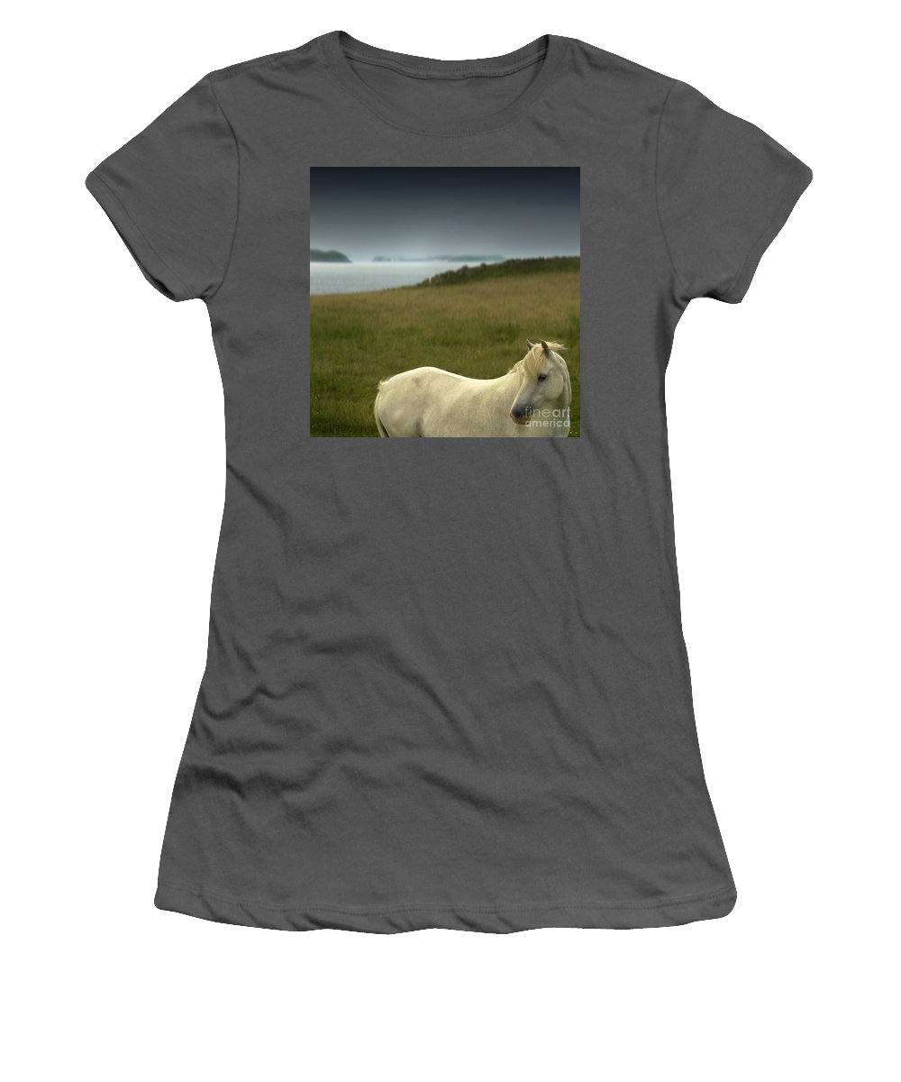 Welsh Pony Women's T-Shirt (Athletic Fit) featuring the photograph The Welsh Pony by Angel Ciesniarska