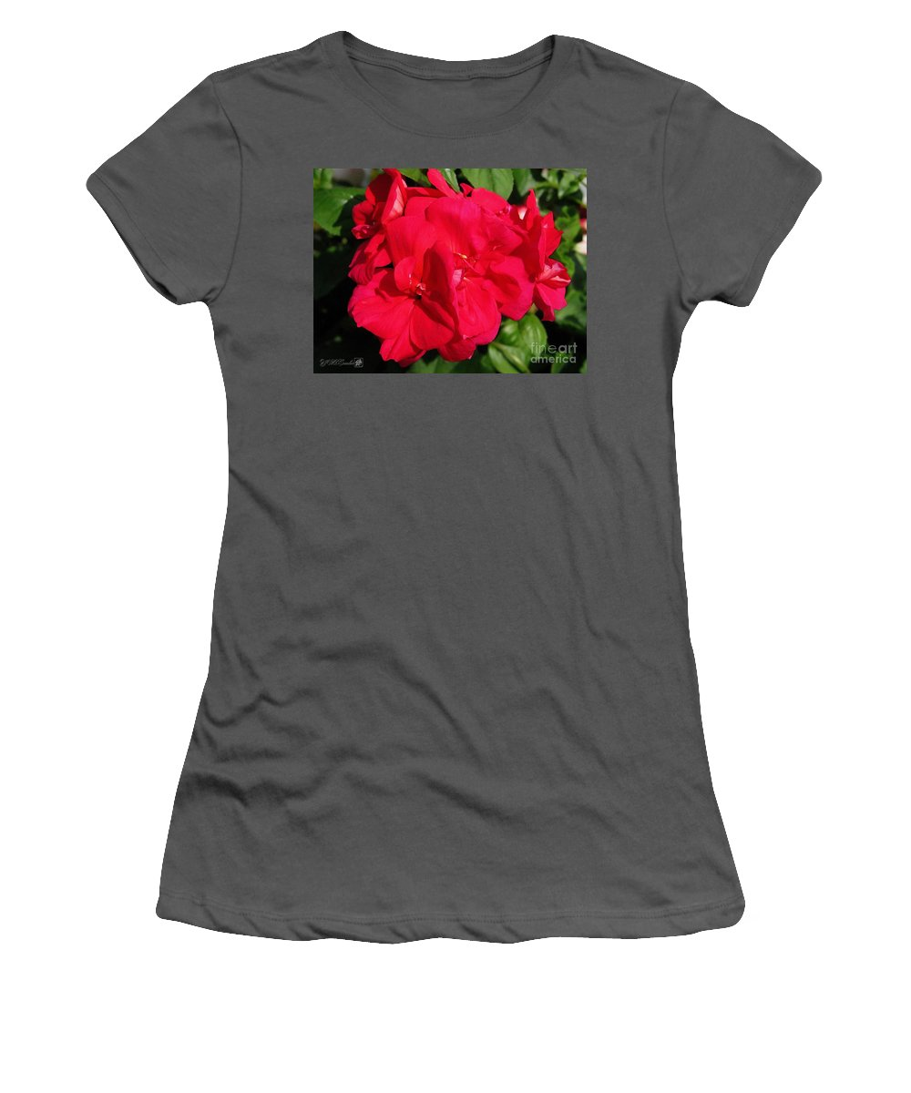 Zonal Geranium Women's T-Shirt (Athletic Fit) featuring the painting Zonal Geranium Named Candy Cherry by J McCombie