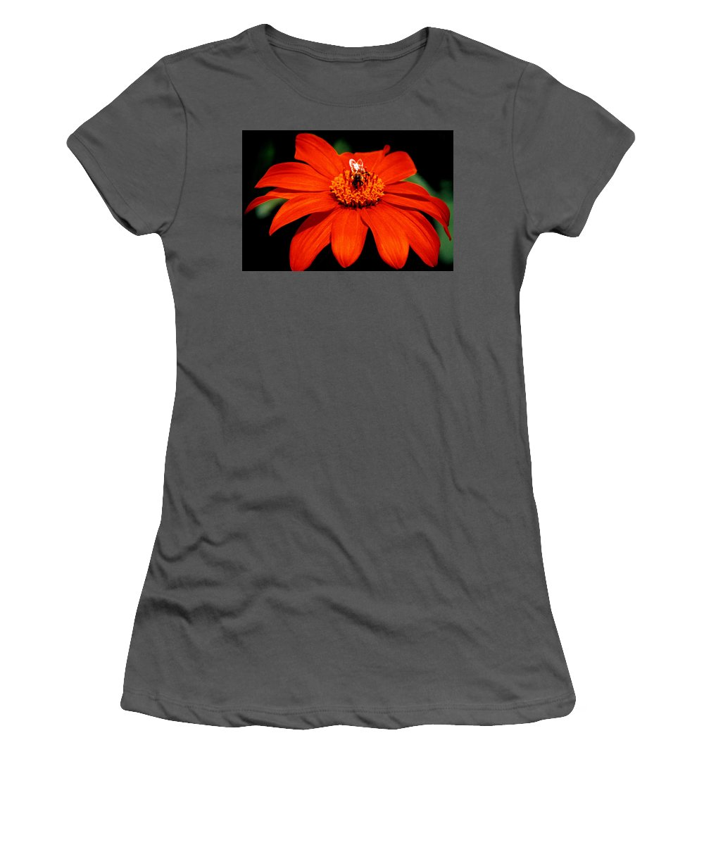 Original Women's T-Shirt (Athletic Fit) featuring the photograph Busy Bee by J D Owen