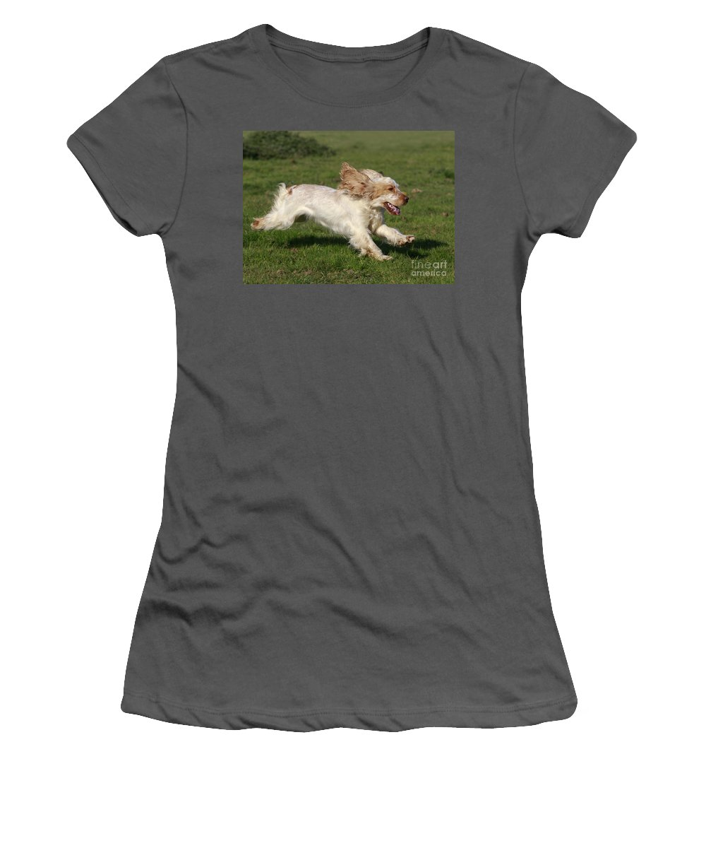 English Cocker Women's T-Shirt (Athletic Fit) featuring the photograph English Cocker Spaniel by Jean-Michel Labat