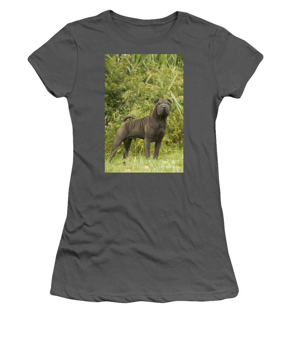 Shar Pei Women's T-Shirt (Athletic Fit) featuring the photograph Shar Pei Dog by Jean-Michel Labat