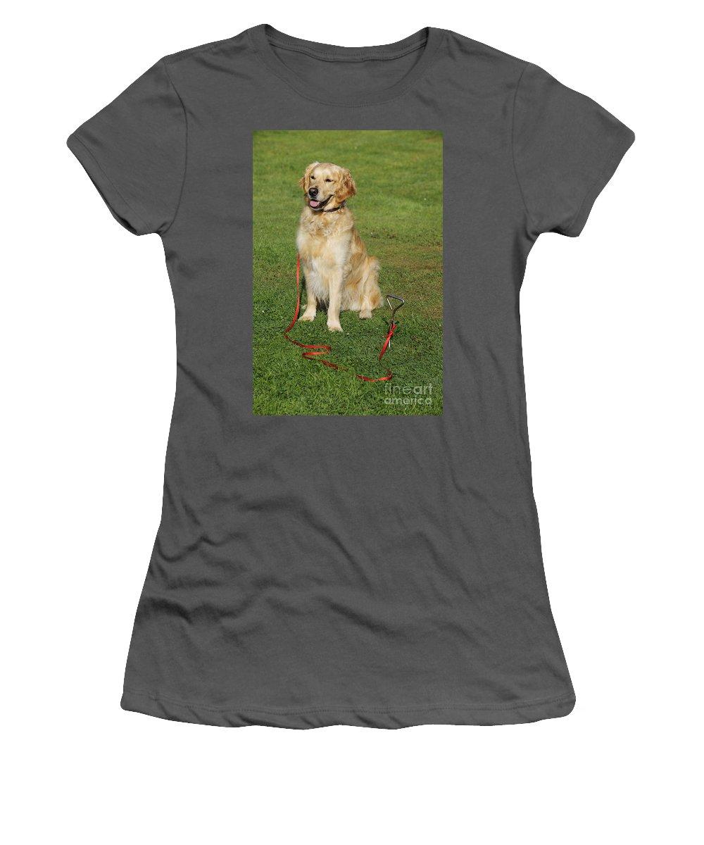 Golden Retriever Women's T-Shirt (Athletic Fit) featuring the photograph Golden Retriever Dog by John Daniels