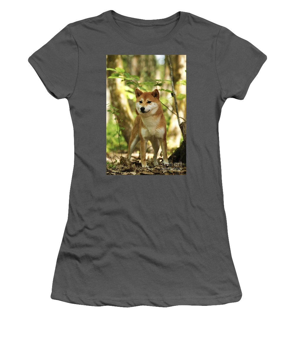 Shiba Inu Women's T-Shirt (Athletic Fit) featuring the photograph Shiba Inu Dog by Jean-Michel Labat
