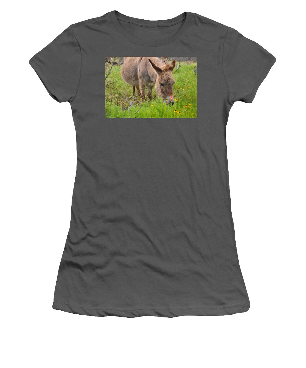 Wildlife Women's T-Shirt (Athletic Fit) featuring the photograph Adorable Mini-burro by Lynn Bauer