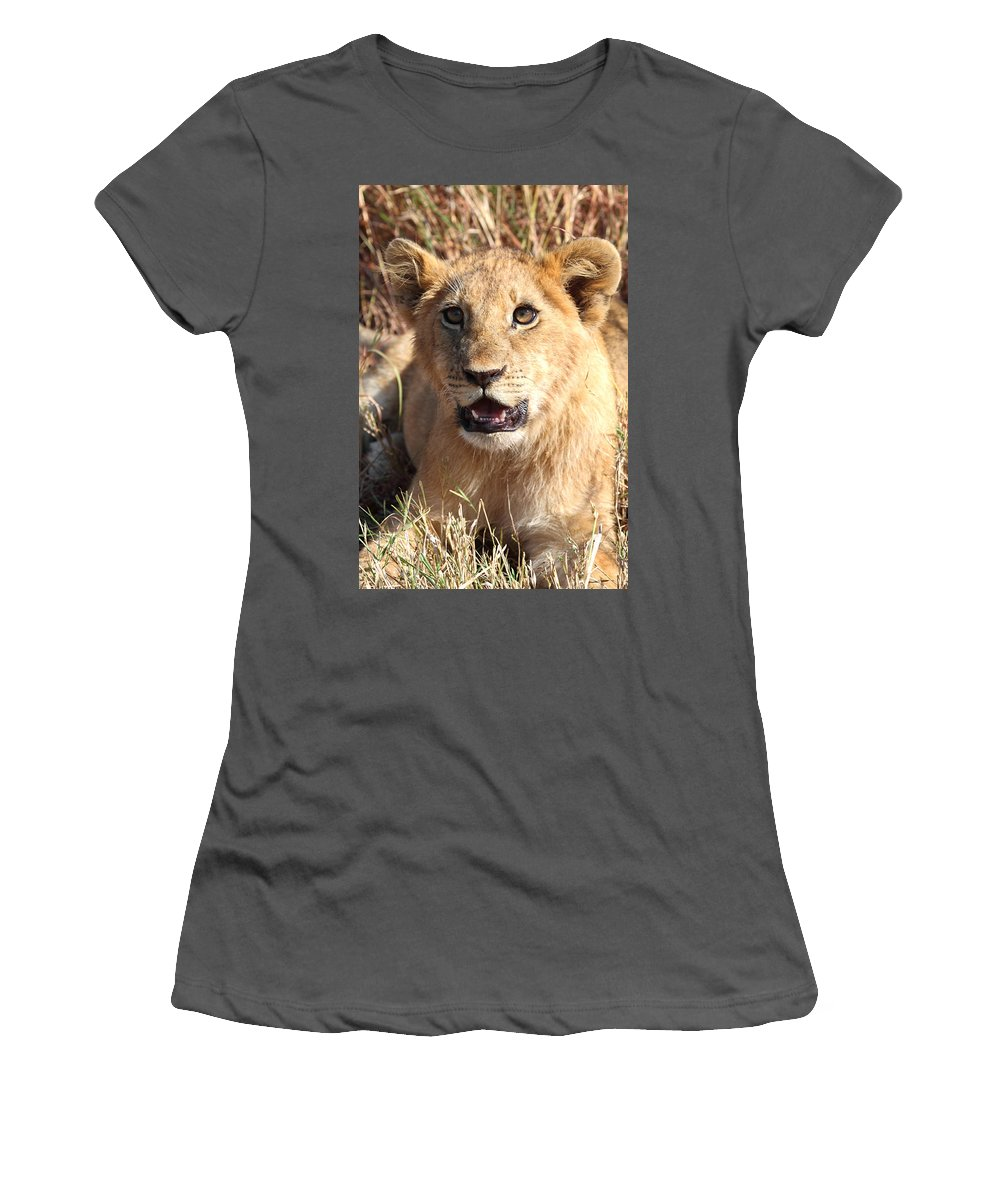 Lion Women's T-Shirt (Athletic Fit) featuring the photograph African Lion Cub Resting by Carole-Anne Fooks