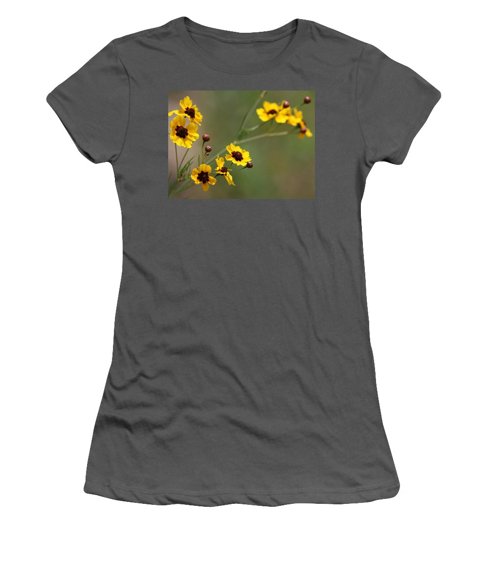 Coreopsis Women's T-Shirt (Athletic Fit) featuring the photograph Alabama Wildflowers Coreopsis Tinctoria Tickseed by Kathy Clark