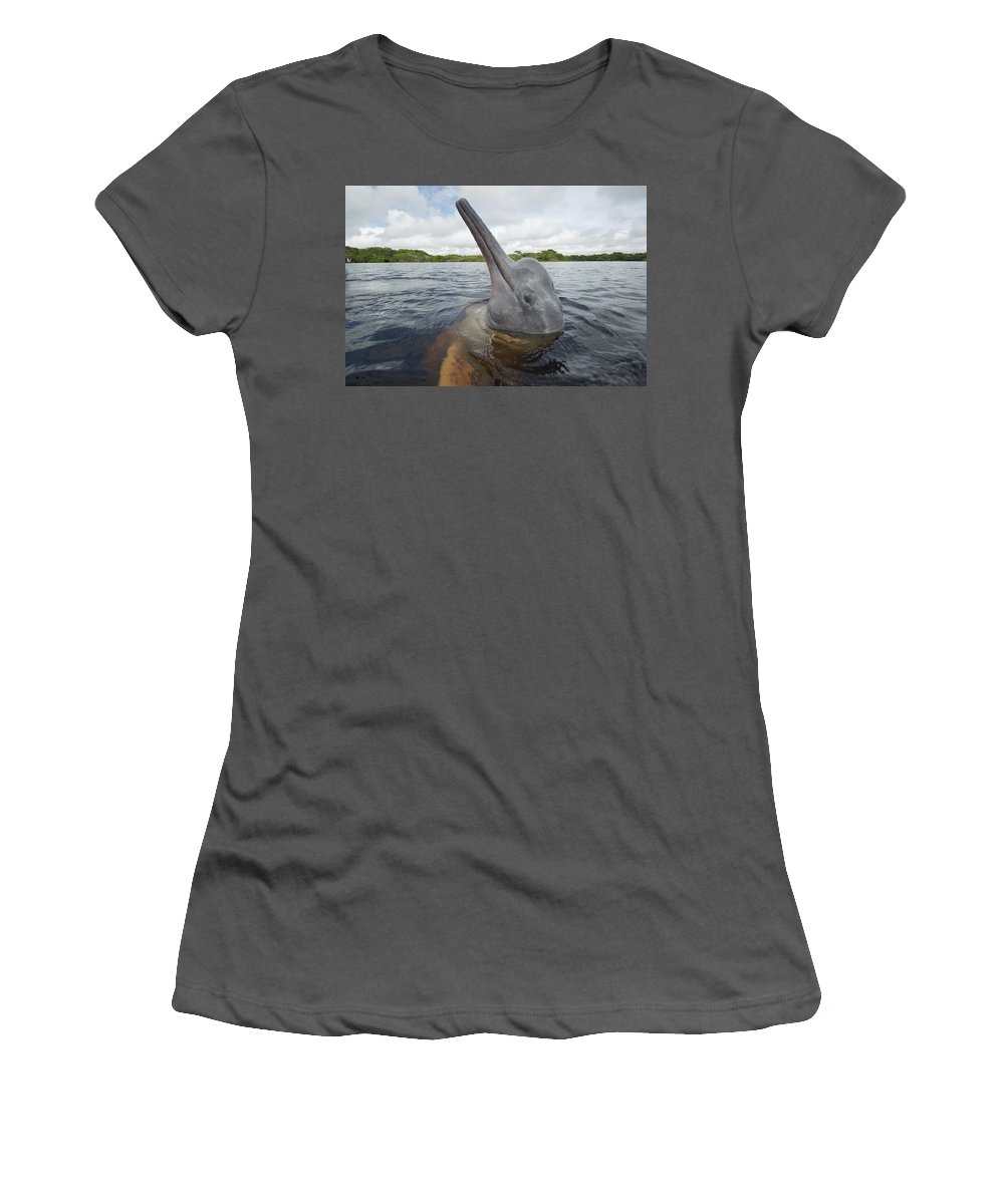 Feb0514 Women's T-Shirt (Athletic Fit) featuring the photograph Amazon River Dolphin Spy-hopping Rio by Hiroya Minakuchi