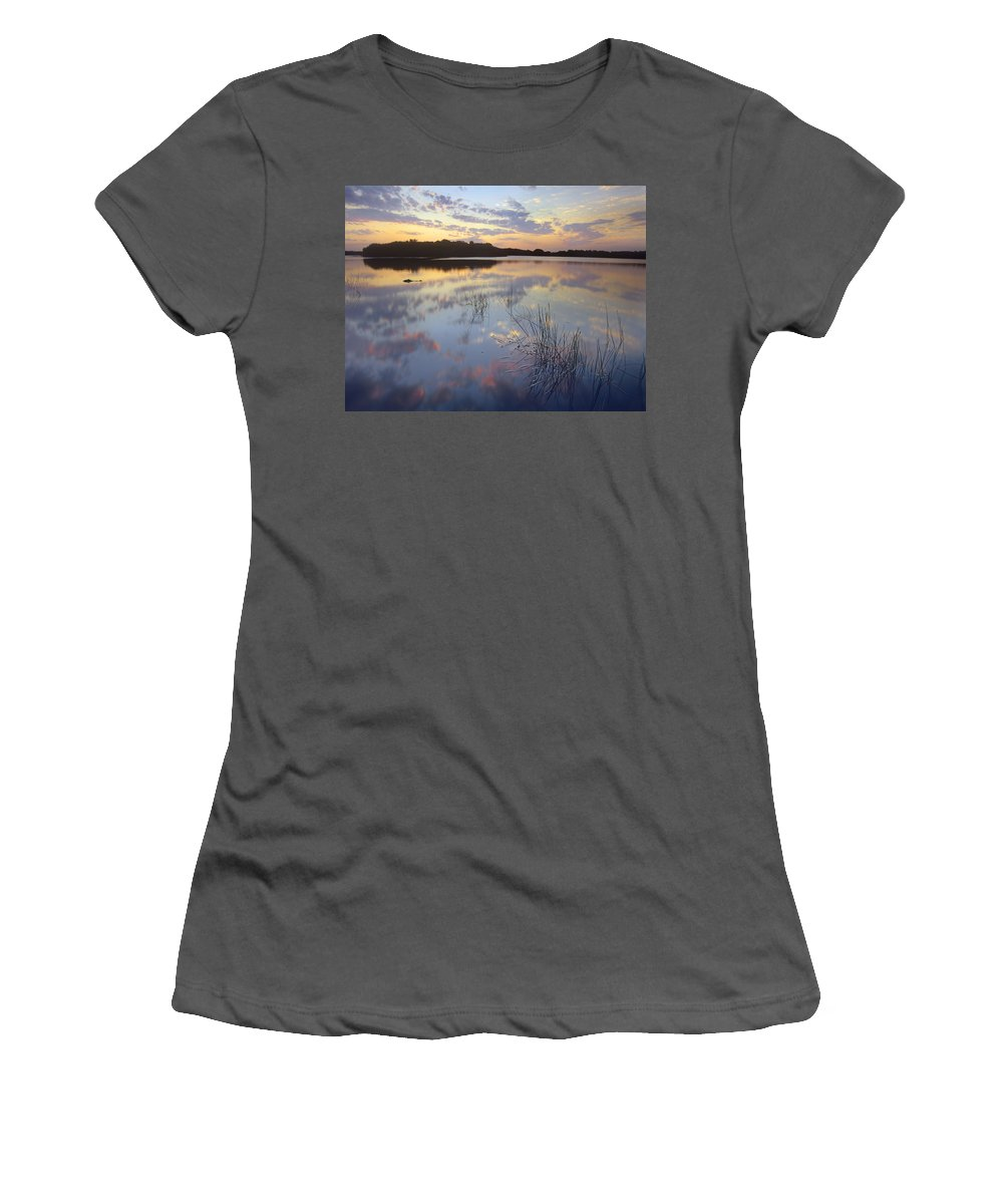 Feb0514 Women's T-Shirt (Athletic Fit) featuring the photograph American Alligator Everglades Np Florida by Tim Fitzharris
