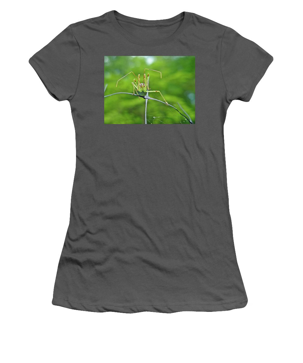 Assassin Women's T-Shirt (Athletic Fit) featuring the photograph Assassin Bug Nymph - Reduviidae by Mother Nature