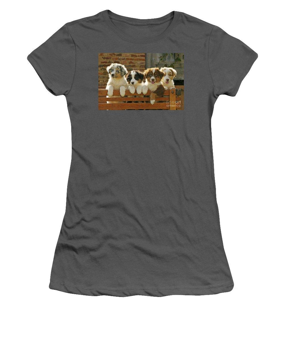 Australian Sheepdog Women's T-Shirt (Athletic Fit) featuring the photograph Australian Sheepdog Puppies by Jean-Michel Labat