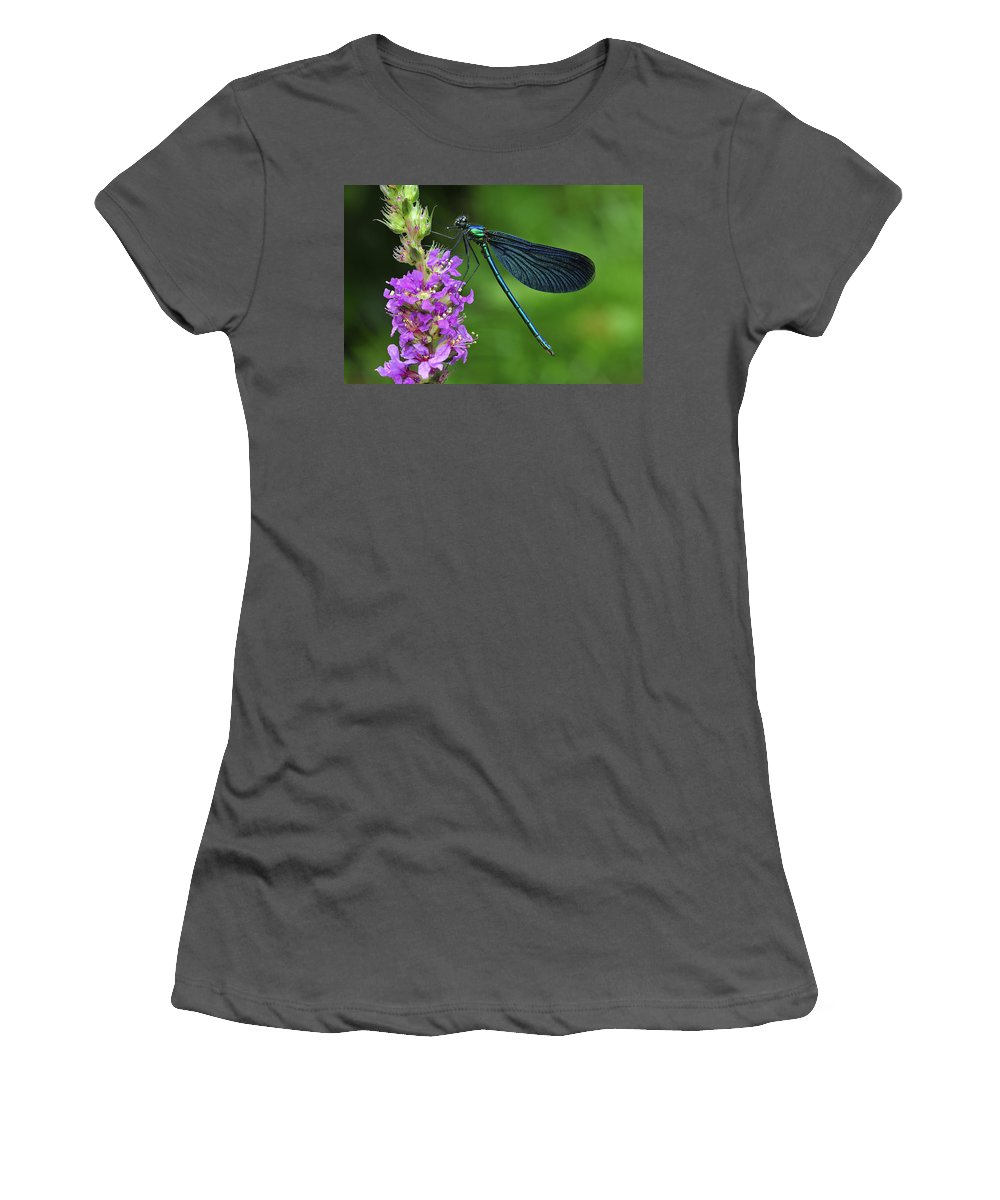 Feb0514 Women's T-Shirt (Athletic Fit) featuring the photograph Beautiful Demoiselle Male Switzerland by Thomas Marent