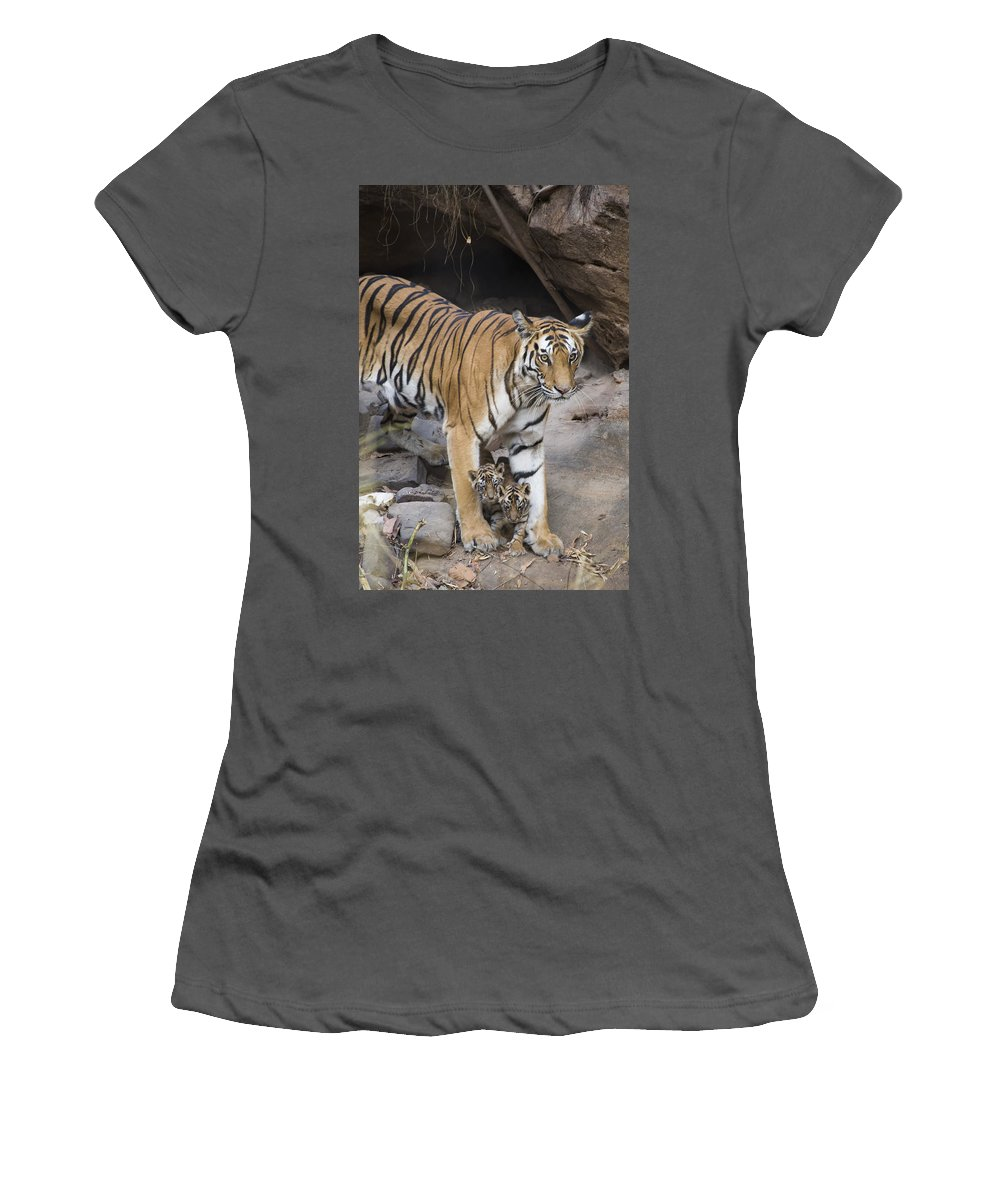 Feb0514 Women's T-Shirt (Athletic Fit) featuring the photograph Bengal Tiger And Cubs Bandhavgarh Np by Suzi Eszterhas