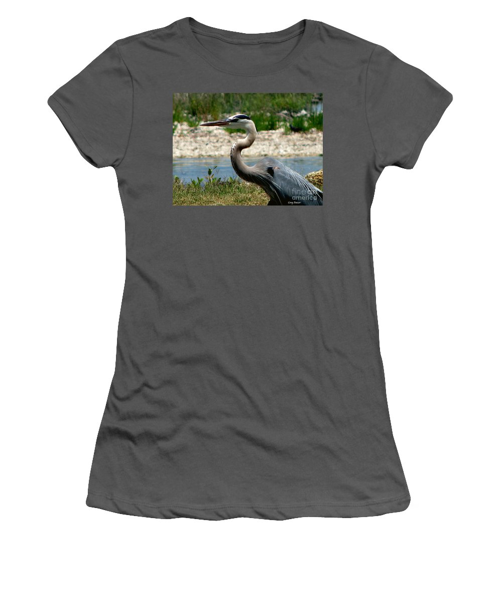 Art For The Wall...patzer Photography Women's T-Shirt (Athletic Fit) featuring the photograph Blue Heron by Greg Patzer