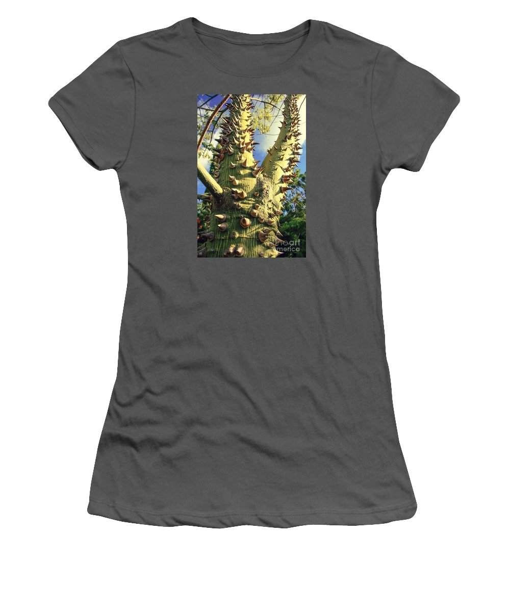 Floss Silk Tree Women's T-Shirt (Athletic Fit) featuring the photograph Bombacaceae - Floss Silk Tree - Chorisia Speciosa Hawaii by Sharon Mau