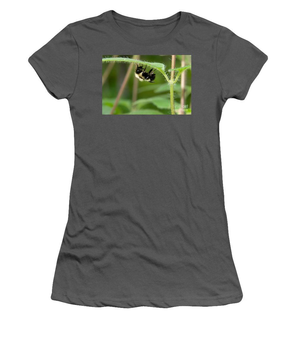 Insect Women's T-Shirt (Athletic Fit) featuring the photograph Bumble Bee by Gregory K Scott