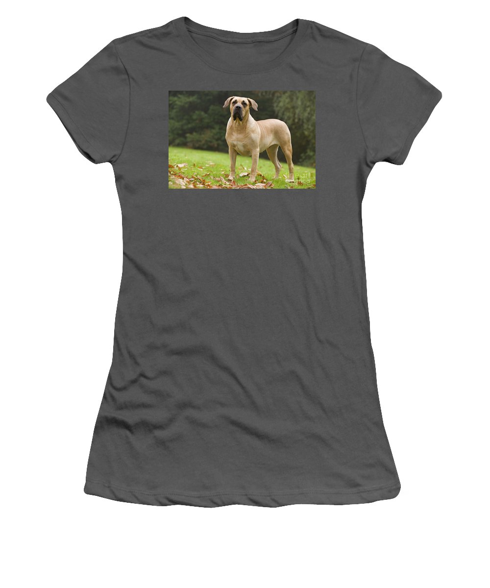 Canary Dog Women's T-Shirt (Athletic Fit) featuring the photograph Canary Dog by Jean-Michel Labat