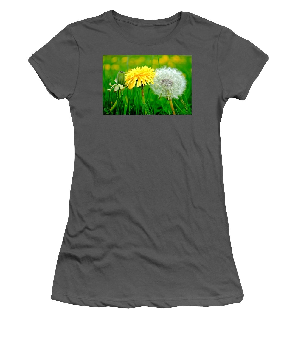 Eclectic Women's T-Shirt (Athletic Fit) featuring the photograph Colorful Macro by Frozen in Time Fine Art Photography