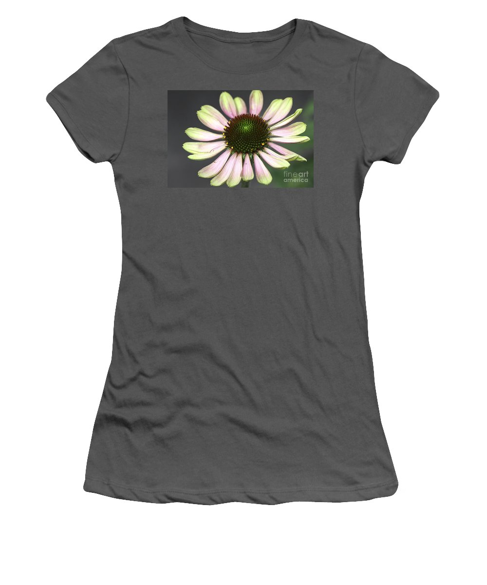 Flower Women's T-Shirt (Athletic Fit) featuring the photograph Cone Display by Deborah Benoit