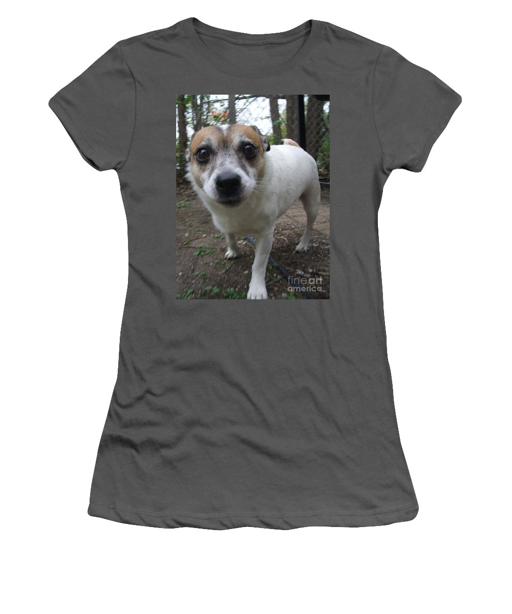 Dog Women's T-Shirt (Athletic Fit) featuring the photograph Curious Jack by Minding My Visions by Adri and Ray