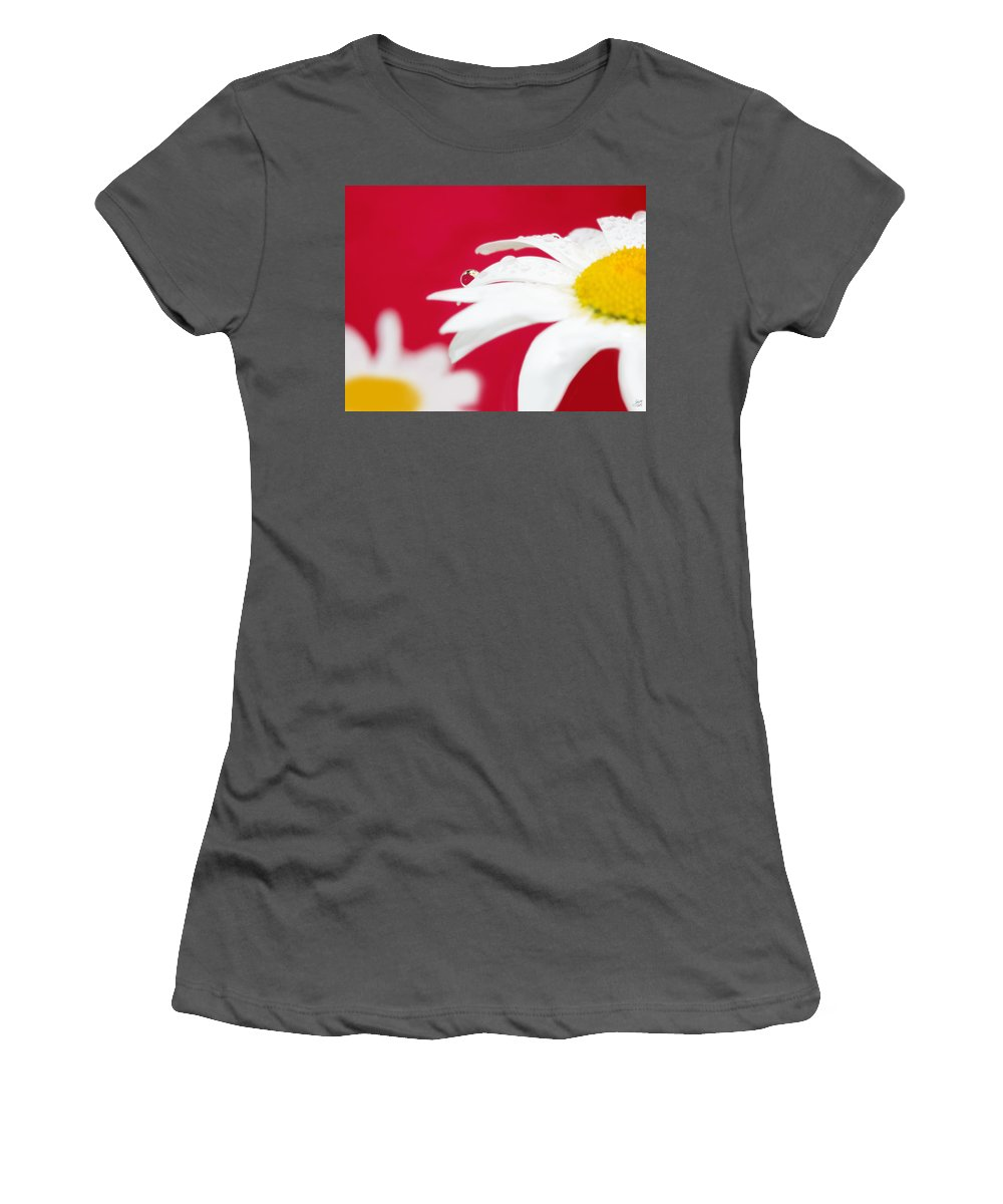 40 X 30 Women's T-Shirt (Athletic Fit) featuring the photograph Daisy Reflecting On Red V2 by Lisa Knechtel