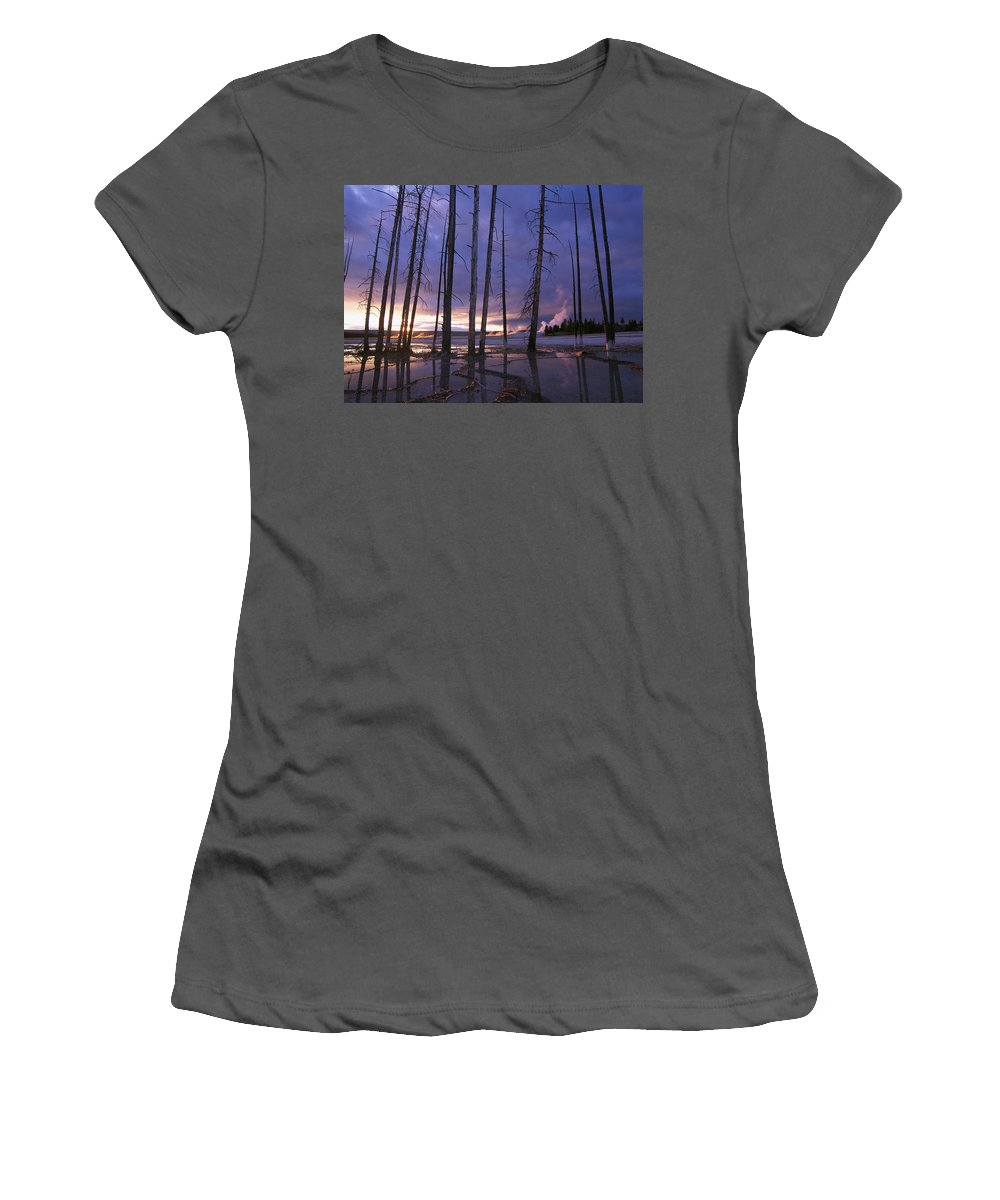Feb0514 Women's T-Shirt (Athletic Fit) featuring the photograph Dead Trees In Lower Geyser Basin by Tim Fitzharris