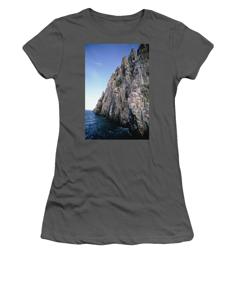 Feb0514 Women's T-Shirt (Athletic Fit) featuring the photograph Dolomite Cliff With Guillemot Colony by Tui De Roy