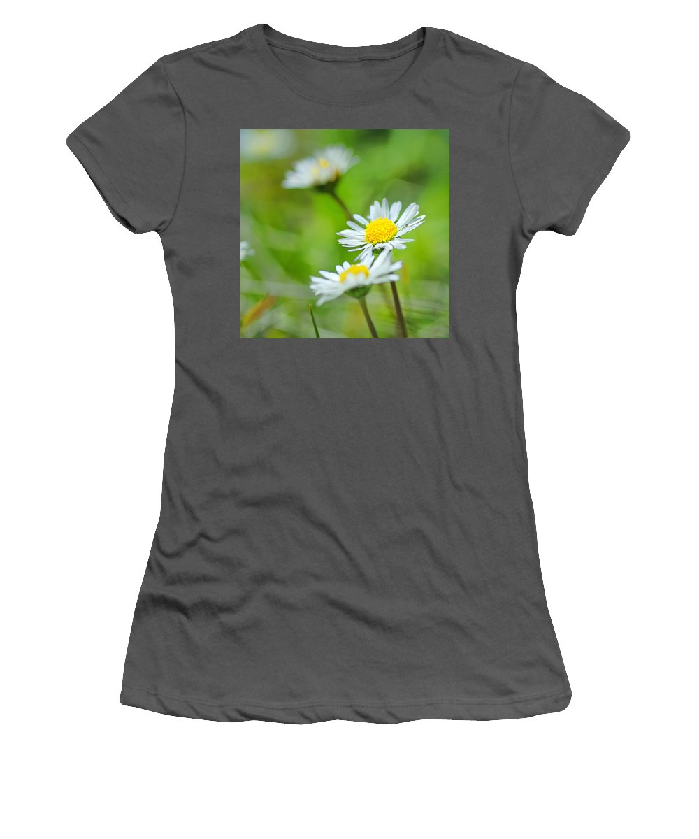Landscape Women's T-Shirt (Athletic Fit) featuring the photograph Dream Flowers by Guido Montanes Castillo