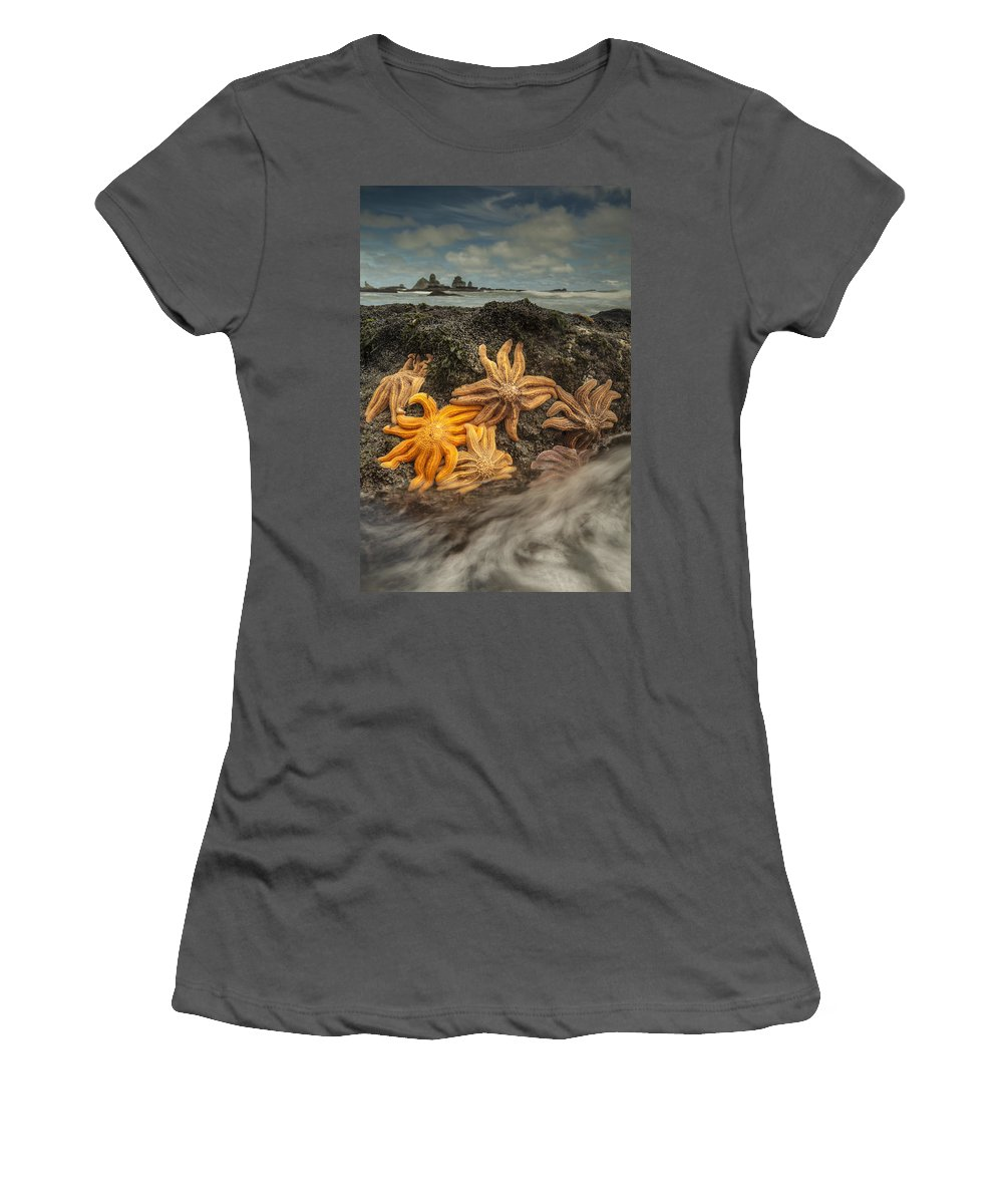 Feb0514 Women's T-Shirt (Athletic Fit) featuring the photograph Eleven-armed Sea Stars At Low Tide by Colin Monteath