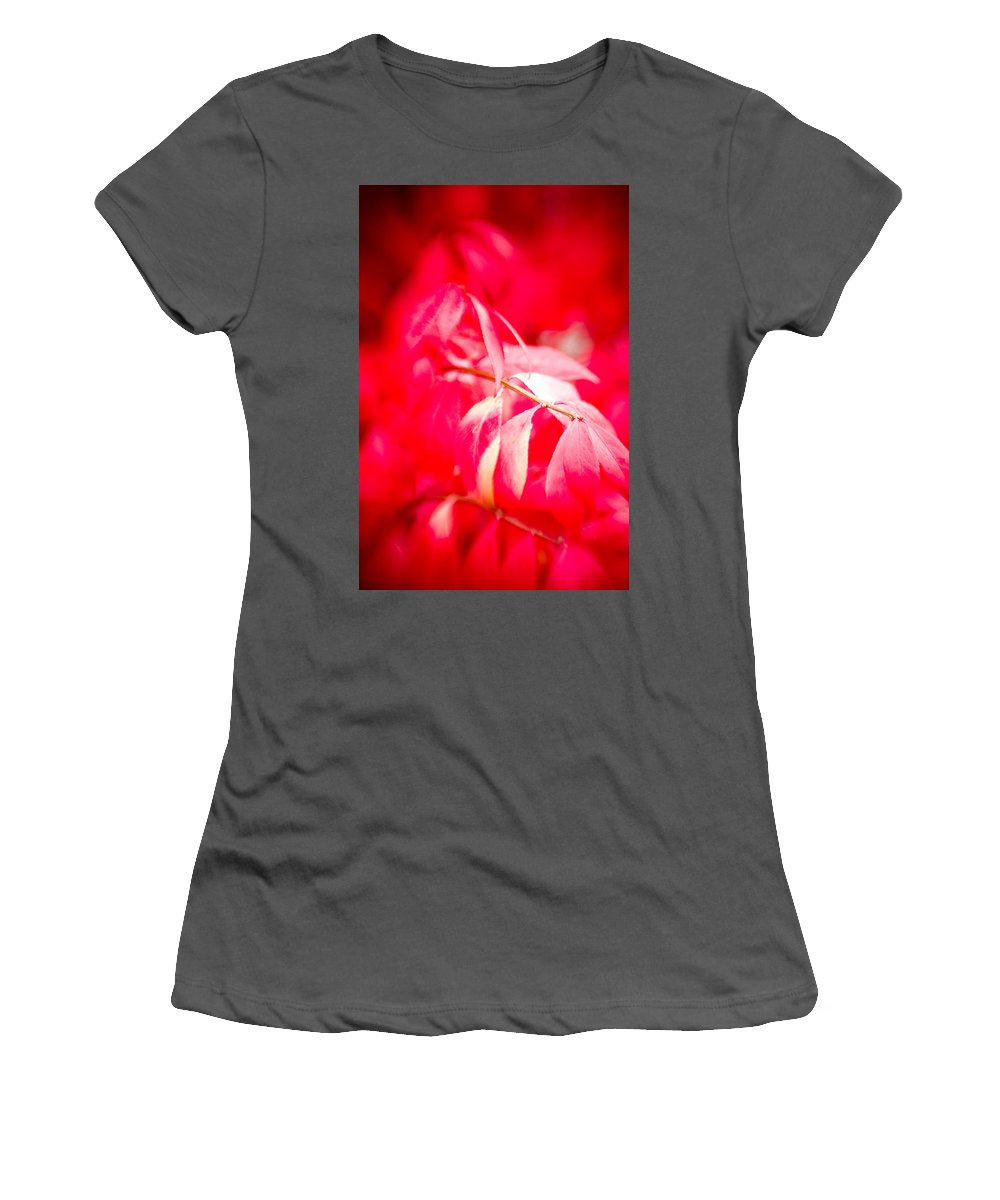 Color Women's T-Shirt (Athletic Fit) featuring the photograph Fall Colors 6669 by Timothy Bischoff