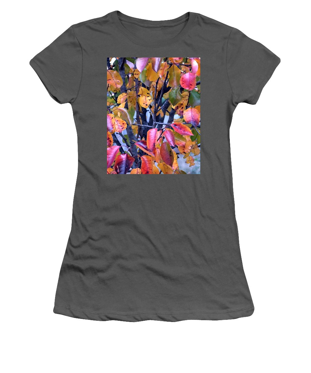 Tree Women's T-Shirt (Athletic Fit) featuring the photograph Fall Colors by Jeanne A Martin