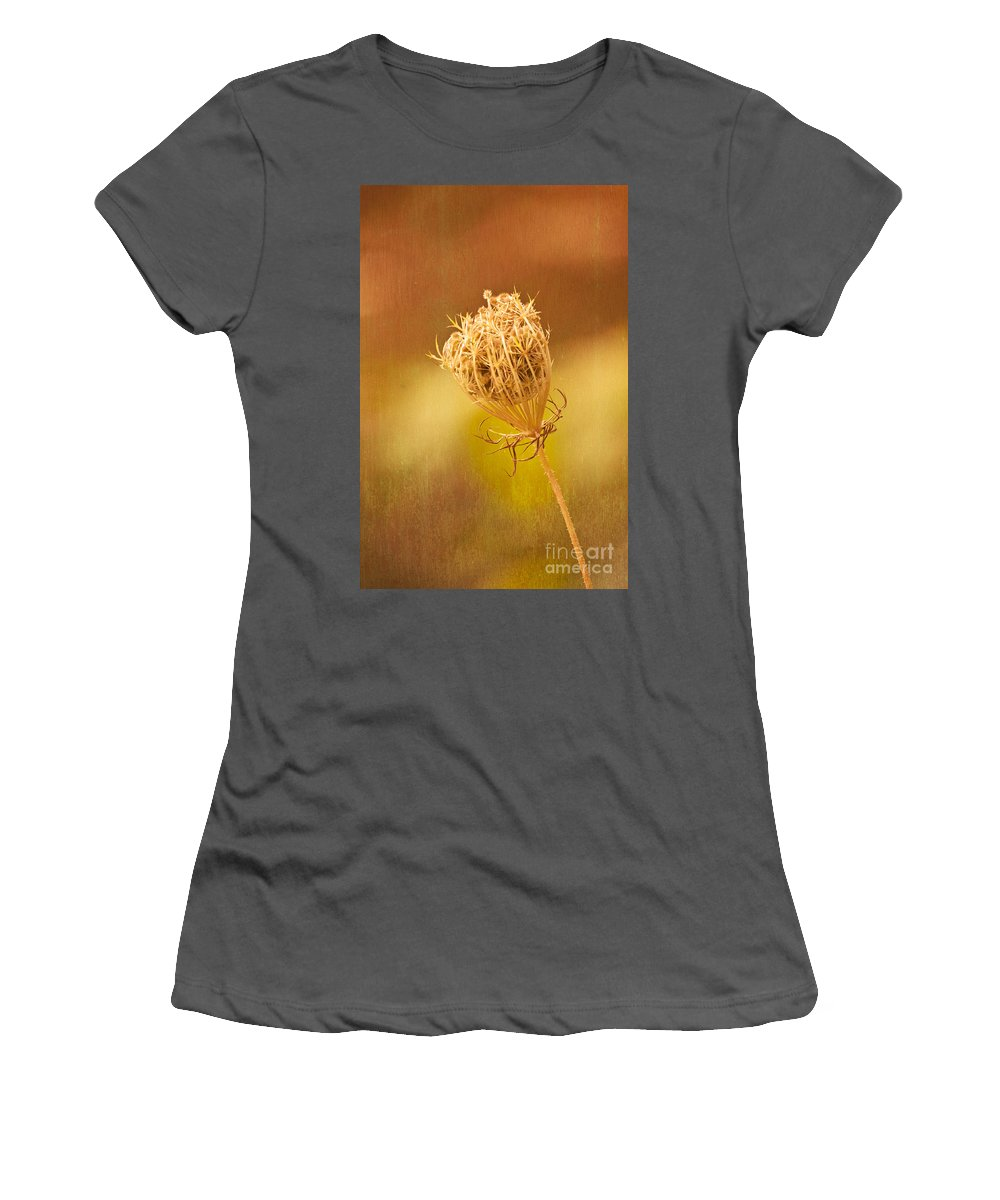 Autumn Women's T-Shirt (Athletic Fit) featuring the photograph Fall by Steve Purnell